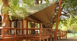 Tuli-Safari-Lodge-tented-suite-exterior-15x10