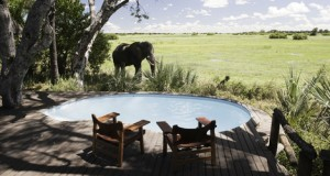 luxury-hotels-botswana-mombo-little-mombo-camp-slide-3_sm
