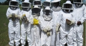 citw-beekeeping-training