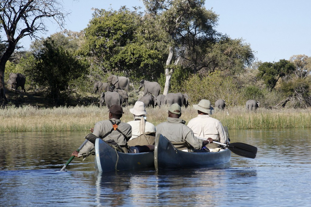 great_plains_canoe_elephants