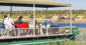The new cruise from Ihaha jetty, Chobe National Park