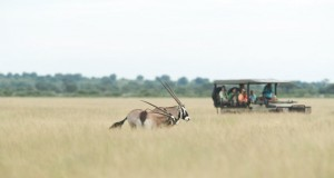 Gemsbok Vehicle CKGR 1-w1200-h800