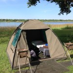 Serviced Camping 2