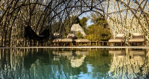 Wilderness Safari, Jao Reserve, Botswana, Crookes And Jackson